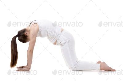Prenatal Yoga, Cat pose