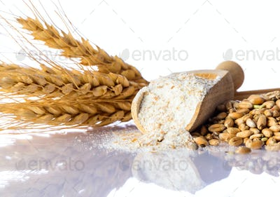 Flour, Wheat and Cereal Grain