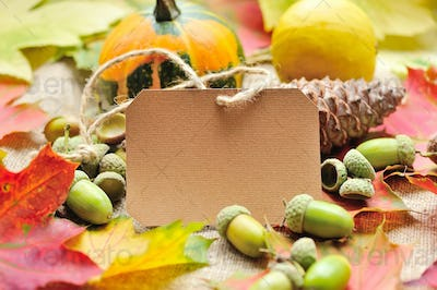 Blank paper sticker with autumn acorns and leaves