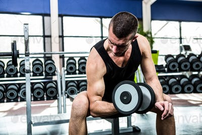 Muscular man exercising with dumbbells at gym