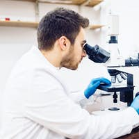 man, male scientist, chemist working with microscope in pharmaceutical laboratory, examining samples