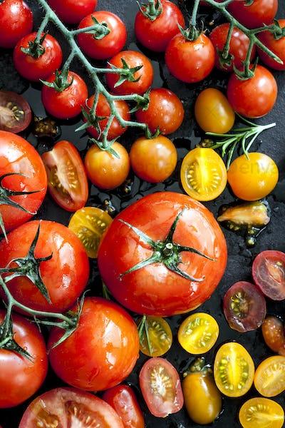 Tomato Varieties on Black Overhead View
