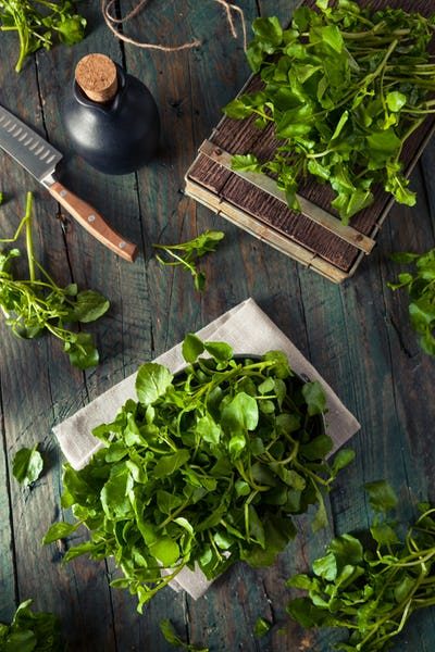 Raw Organic Green Watercress
