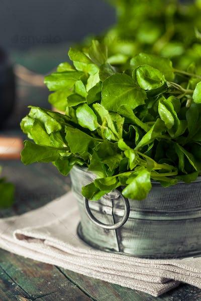Raw Organic Green Watercress