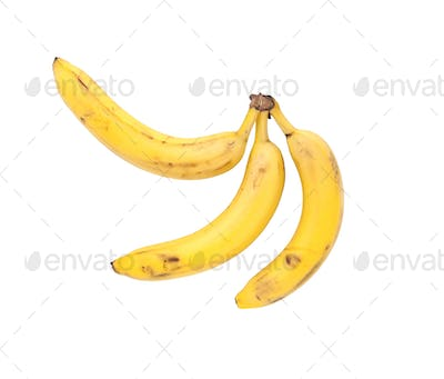 Three bananas. Isolated.