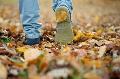 Male shoes walking on fall leaves outdoors