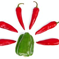 Sweet and hot peppers