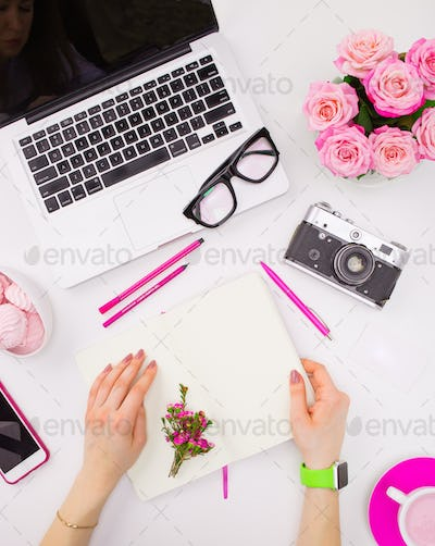 The female hands with a notebook