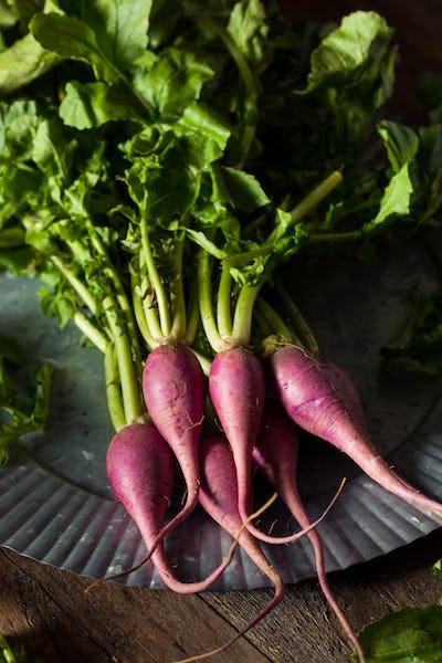 Raw Organic Purple Radishes