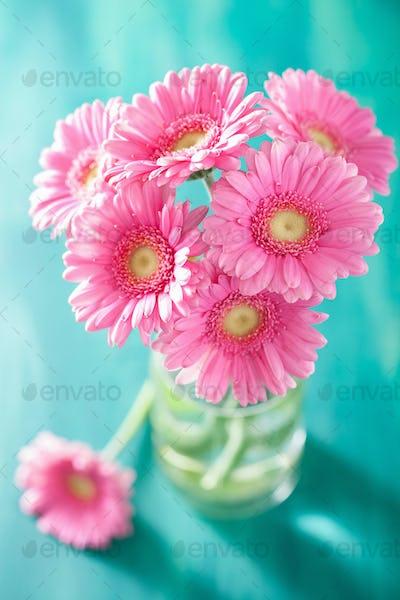 beautiful pink gerbera flowers bouquet in vase