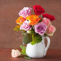 beautiful colorful rose flowers bouquet in vase