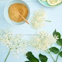 Ingredients for making elderflower syrup