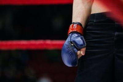 hand in glove boxer