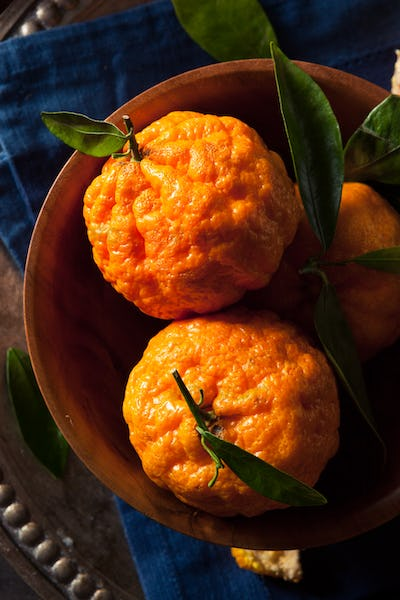 Raw Organic Gold Nugget Mandarin Oranges