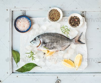 Fresh uncooked sea bream fish with lemon, herbs, ice and spices