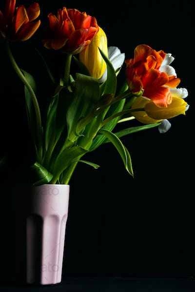 Beautiful flower bouquet of colorful tulips in pink vase on black background