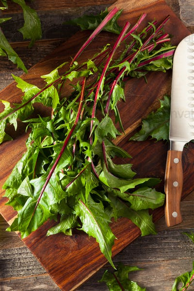 Raw Organic Red Dandelion Greens