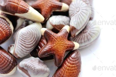 Swiss chocolate seashells on white background