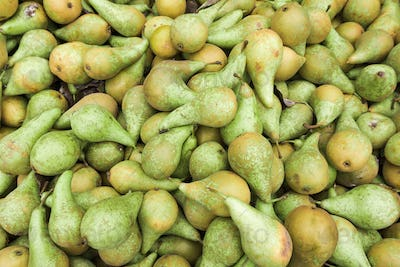 Green pears.  Fresh pears