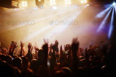 Popular singer concert
