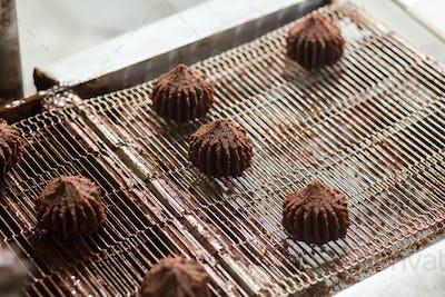 Dark brown sweets on conveyor.