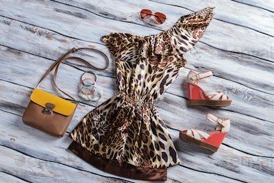 Leopard dress with bicolor purse.
