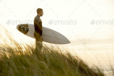 Searching for the swell