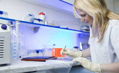 portrait of a female researcher doing research in a lab (color t