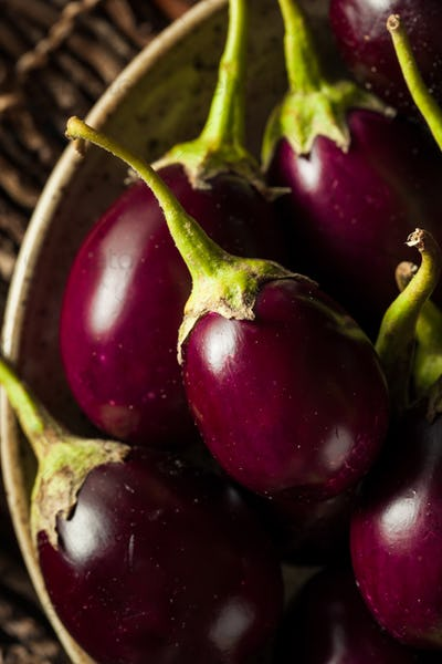 Organic Raw Baby Indian Eggplants