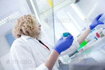 portrait of a female researcher doing research in a lab (shallow