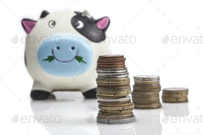 Coins In Front Of Piggy Bank