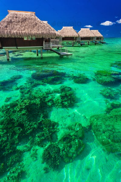 Water villas on the tropical reef, the best island holidays