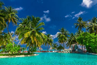 Large infinity swimming pool on the beach with palm trees and um