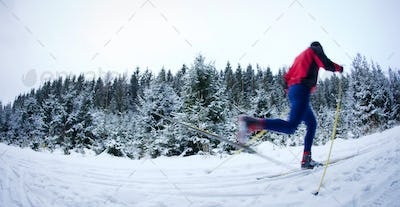 young man cross-country skiing on a snowy forest trail (color to