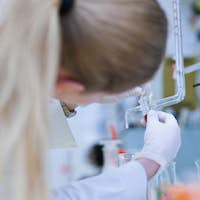female researcher carrying out research in a chemistry lab (colo