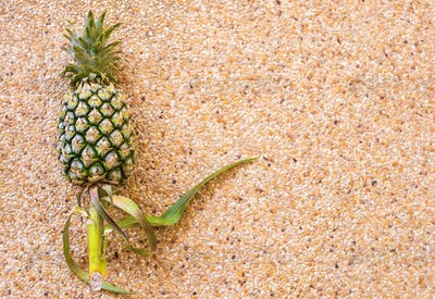 pineapple with copy space over background. Fruits, diet, healthy food concept