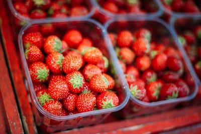 Assortment Of Fresh Organic Red Berries Strawberries At Produce