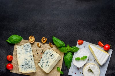Gorgonzola and Camembert Cheese with Copy Space