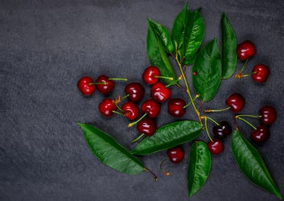 Cherries with Composition Copy Space
