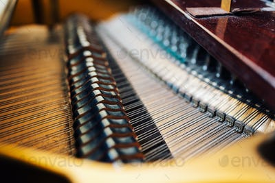 the internal parts of  grand piano strings