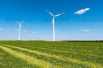 Windwheels in a mowed field