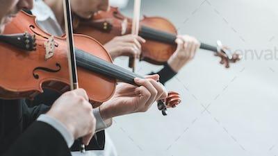 Violin duet performance