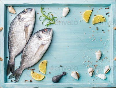 Fresh raw sea bream fish decorated with lemon slices, herbs and  shells in blue tray, copy space