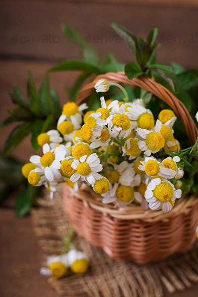 Bouquet of daisies in a basket on a wooden background