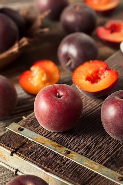 Raw Organic Black Apricot Fruit