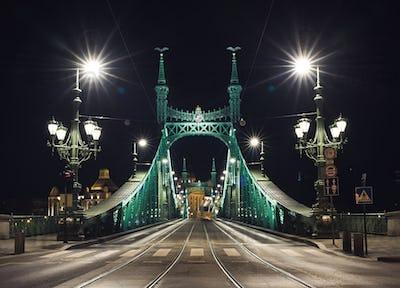 Night view of Liberty Bridge in Budapest, Hungary