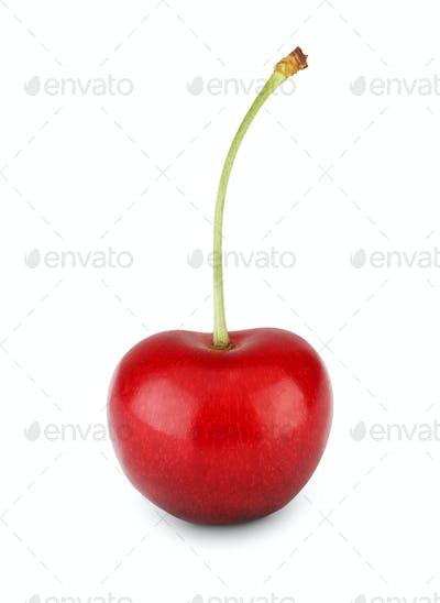 Fresh ripe cherry closeup isolated on white background