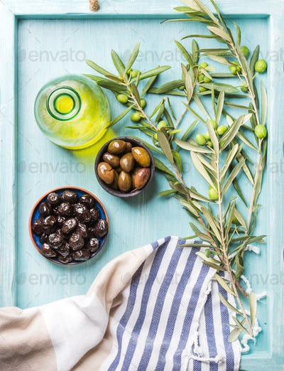 Green and black olives, olive tree sprigs