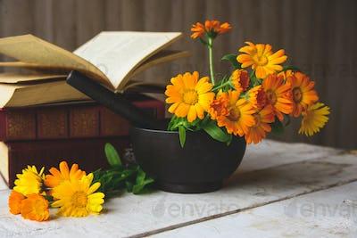 bouquet of calendula