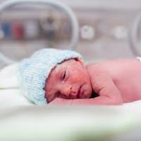 Newborn boy covered in vertix in incubator